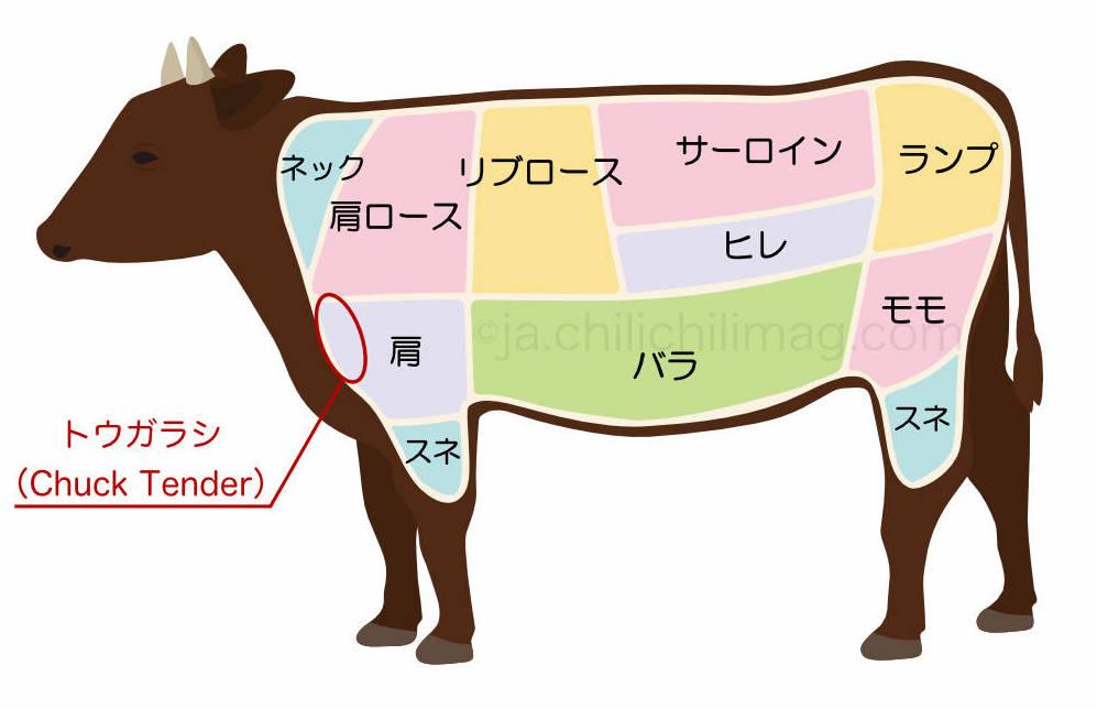 トウガラシの部位(牛肉)